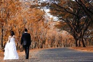 the_Wedding_by_blixyklingi