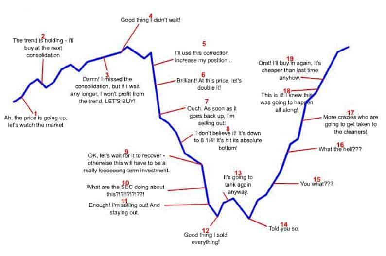 the stock market emotional roller coaster